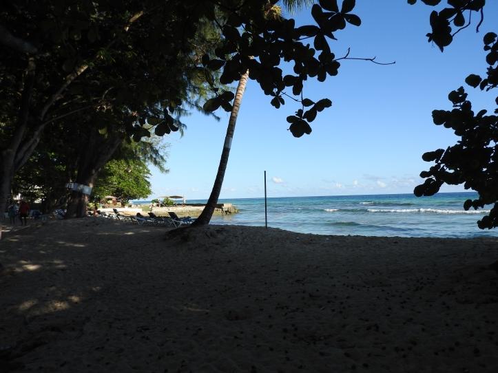 Caribbean sea, Barbados beach