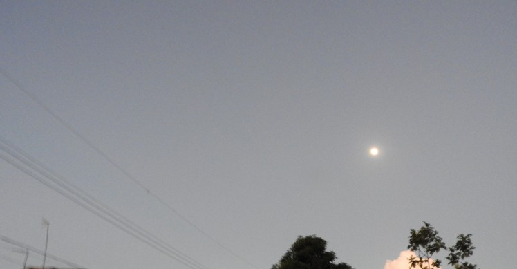 Moon In Evening Sky
